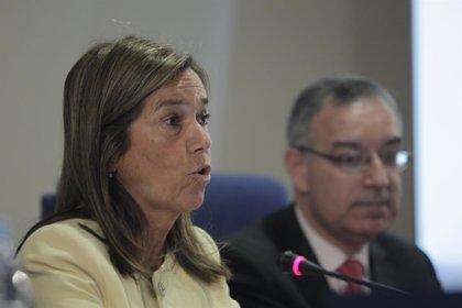 PSOE pide que Mato explique sus planes tras la petición de la ONU de rectificar la política sanitaria con inmigrantes