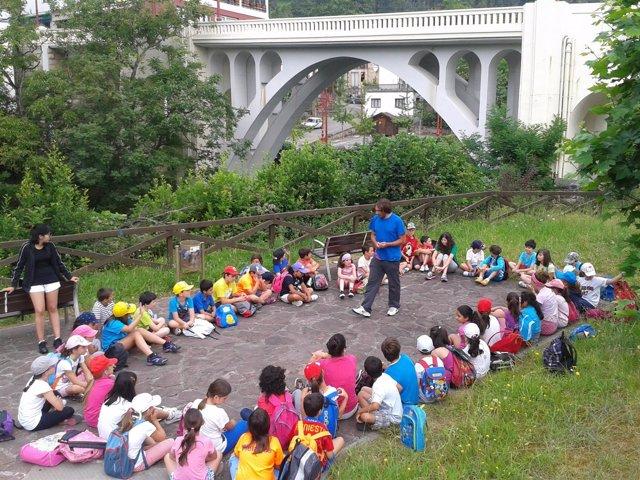 Participantes en los campamentos de día