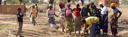 Investigadores UPV y La Fe desarrollan un secador solar para reducir la malnutrición infantil en Burkina Faso