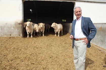 Lobón defiende al apoyo al sector ganadero en la nueva PAC