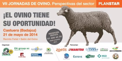 Corderex analizará el futuro del sector del ovino