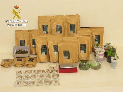 "La Guardia Civil desmantela un punto de venta de marihuana en un ""Grow Shop"" de Calahorra (La Rioja)"