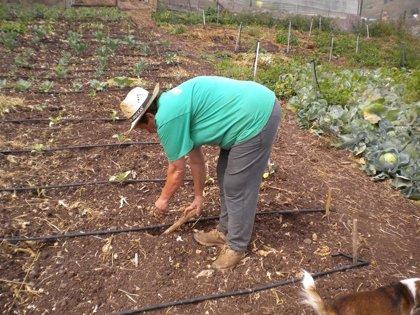 C-LM pedirá rebajas fiscales para agricultores sin cosecha por la sequía