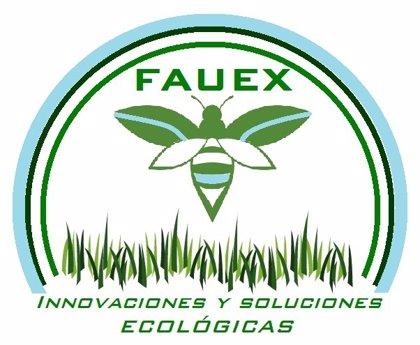 Dos proyectos sobre creación de granjas de insectos y cultivo de criadillas de tierras, a la final de 'Expertemprende'