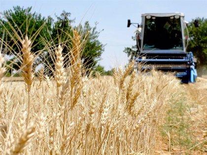 El Chaparrillo abrirá las puertas el 27 de mayo en Ciudad Real para mostrar sus novedades en cultivos herbáceos