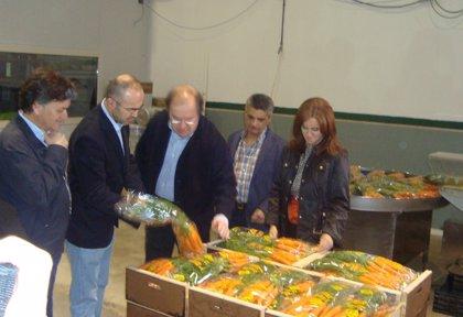 """Herrera (PP) pide el voto para mandar a Europa a """"los mejores"""" a defender el interés de agricultores y ganaderos"""
