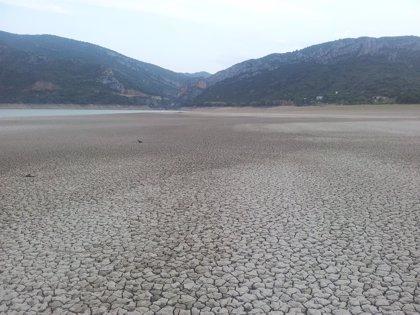 UAGA lleva sus propuestas para paliar las pérdidas ocasionadas por la sequía la Mesa de Seguimiento de las Producciones
