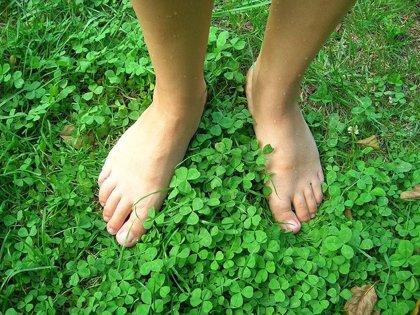 Podólogos recomienda hidratar y exfoliar para adaptar el pie al calzado de verano