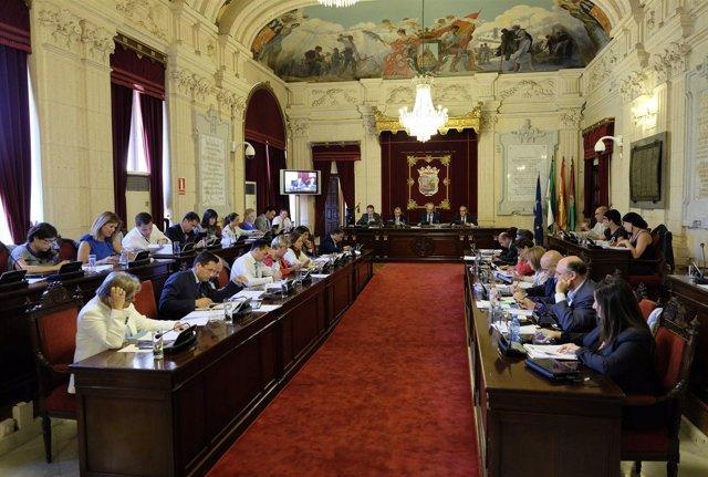 Pleno municipal Ayuntamiento Málaga de mayo, De la Torre
