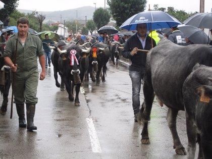 CANTABRIA.-Santander recupera este domingo la tradicional 'pasá' tras 25 años