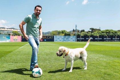Xavi Hernández, Rudy Fernández, y Sergio Dalma se suman a la prevención de la leishmaniosis canina