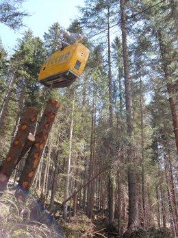 ITENE participa en un proyecto para optimizar la logística forestal
