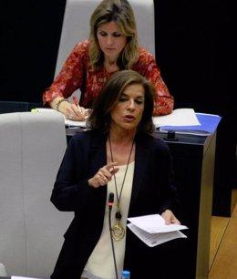 Ana Botella en el Pleno