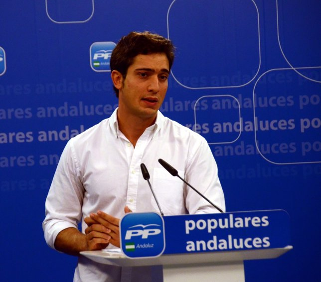 El presidente de las NNGG de Andalucía, Luis Paniagua