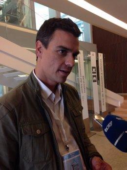 Diputado nacional del PSOE Pedro Sánchez