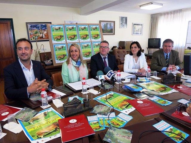 Presentación del concurso de razas asturianas
