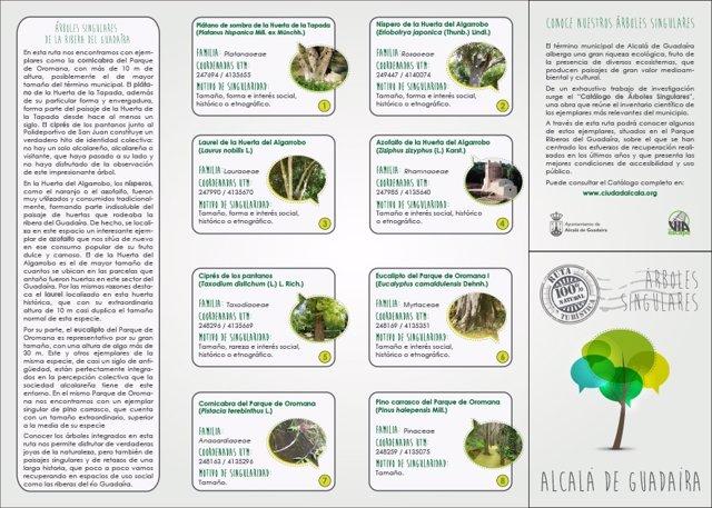Cartel del catálogo 'Arboles singulares' de Alcalá de Guadaíra.