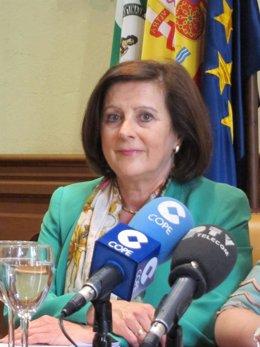 La consejera María José Sánchez Rubio