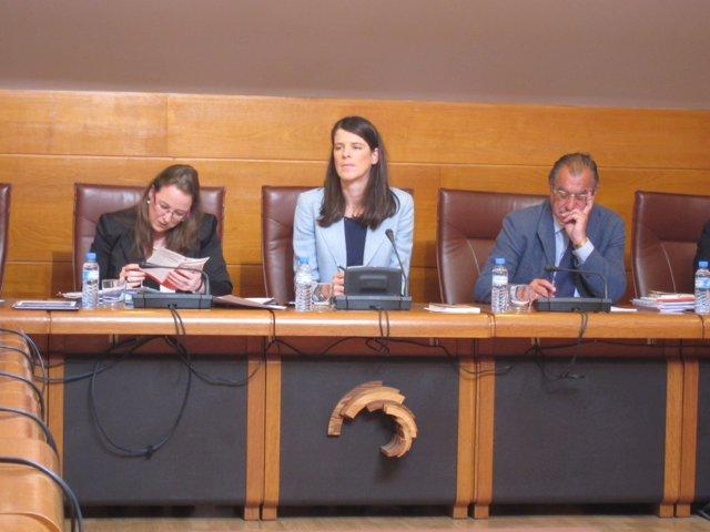 Comisión Presidencia y Justicia