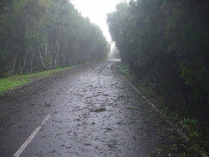 La Gomera inicia la próxima semana el plan de mejora de carreteras