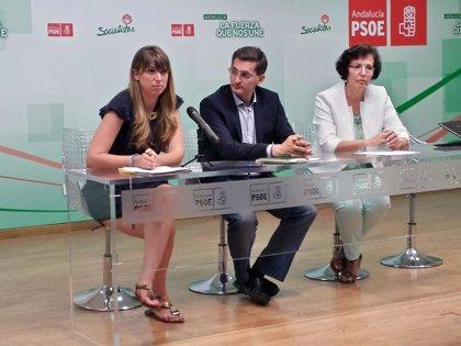 """PSOE critica que el PP ponga la salud """"al servicio de las grandes empresas"""" en vez de mirar a los ciudadanos"""