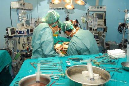 En España se obtienen el corazón o los pulmones en menos del 20% de los donantes de órganos tras muerte encefálica