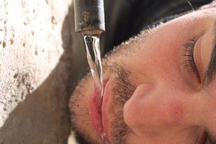 Contra las altas temperaturas: beber agua, evitar las horas centrales y protegerse del sol