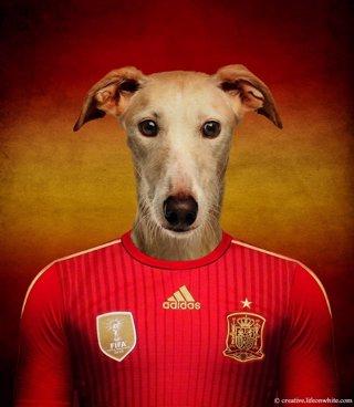 El galgo español vestido para el Mundial de Brasil