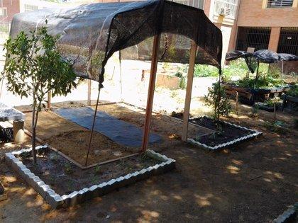 Sadeco dona 1.400 kilos de compost para usar en el Huerto Urbano Social del barrio de La Fuensanta