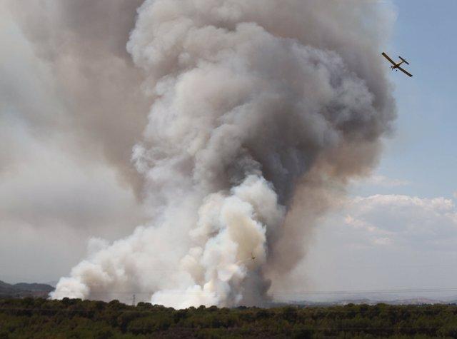 Incendio en la Vallesa