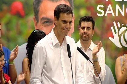 'Plataforma en CyL' en apoyo a Pedro Sánchez