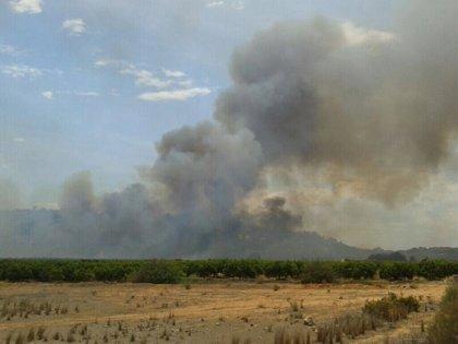 Extinguido el incendio forestal de Chiva (Valencia) tras calcinar 4 hectáreas