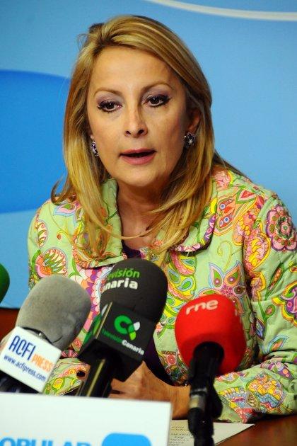 """Navarro (PP) asegura que la privatización de AENA no es """"ninguna amenaza"""" para los aeropuertos de Canarias"""