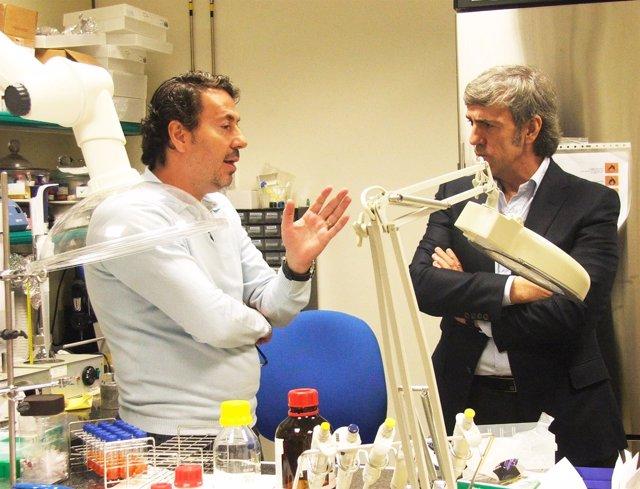 José Moro y Universidad Complutense de Madrid