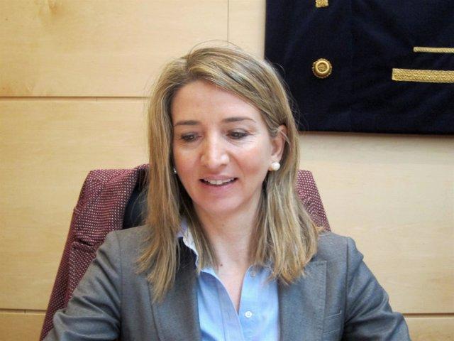 Alicia García en su comparencencia de hoy
