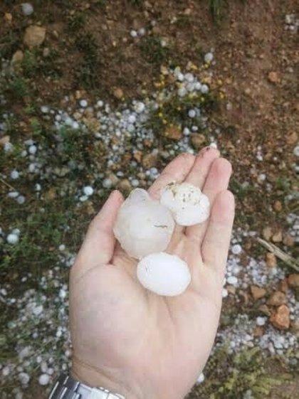 La tormenta de granizo en Caravaca provoca daños en almendros, nogales y cereal