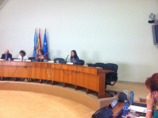 Nieves Domínguez (Sergas) sobre violencia de género