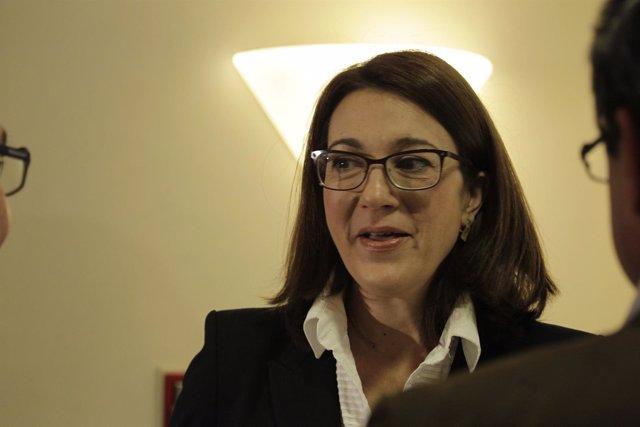 La portavoz del PSOE en el Congreso de los Diputados, Soraya Rodríguez