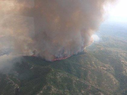 El incendio de Tivissa arrasa ya 800 hectáreas y sigue activo