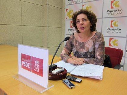 El PSOE pide que Diputación use parte del remanente en duplicar la partida de empleo social y en los municipios
