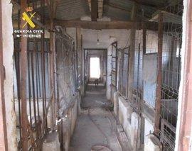 La Guardia Civil presenta 40 denuncias contra el propietario de un centro de cría de perros clandestino en Burgos