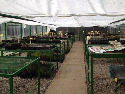El Instituto de Formación Agroambiental de Jaca acogerá en julio un campamento infantil