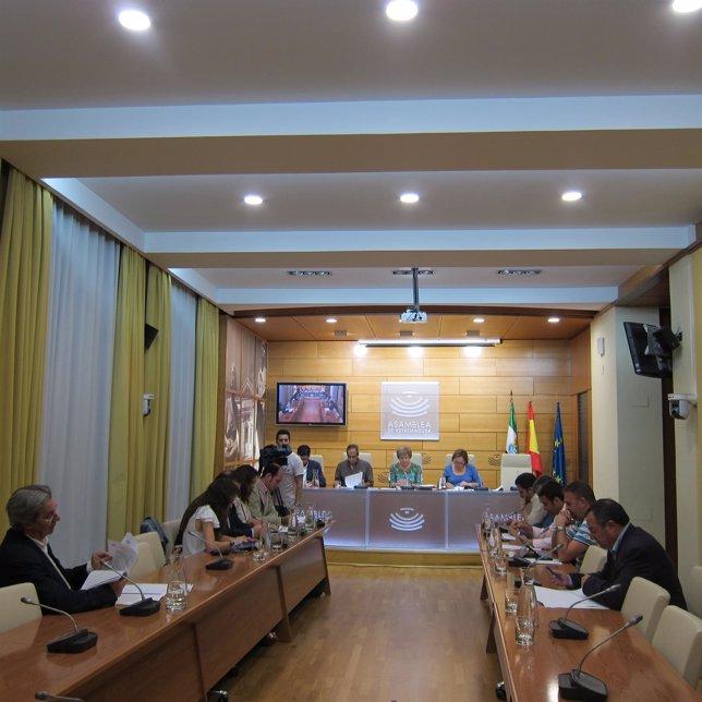 Reunión de la Comisión de Economía