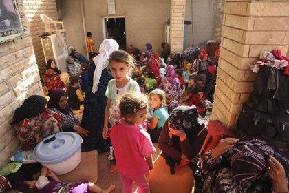 """""""El personal médico está huyendo de las zonas en conflicto en Irak"""", según MSF"""