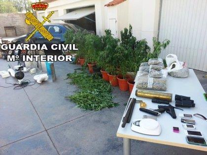 Desmantelan un laboratorio de cultivo de marihuana y un local de antigüedades robadas en Vilafamés