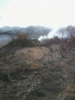 Incendios en solares abandonados