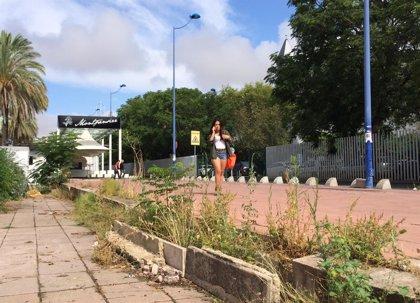 """La asociación Legado Expo avisa de """"vegetación salvaje, suciedad y grafittis en los accesos a la Cartuja"""