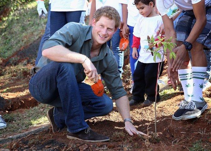 Prince Harry plants a tree as he visits Cota 200