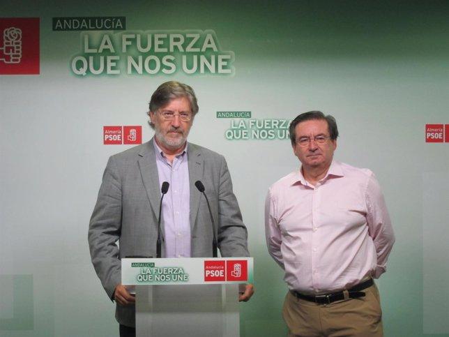 Pérez Tapias presenta su precandidatura al liderazgo del PSOE en Almería