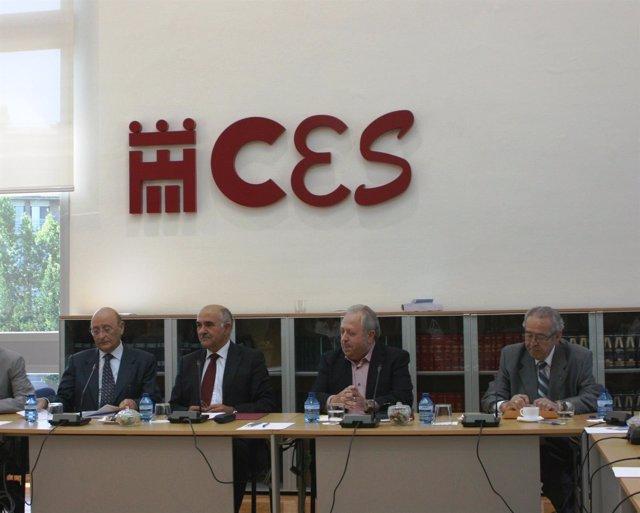 Garre asiste a la sesión del pleno extraordinario del CES